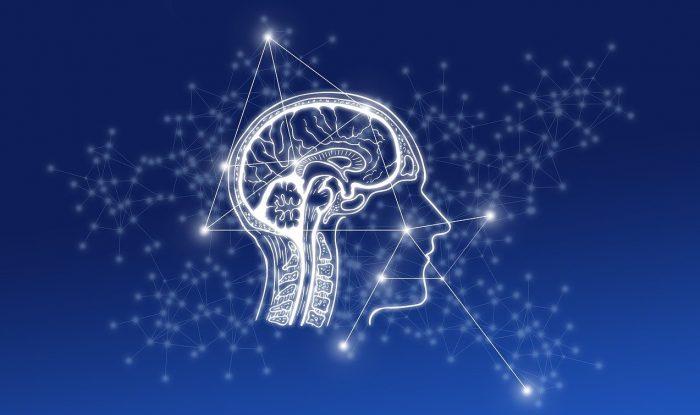 Neural-Networks-Main